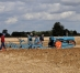 Undă verde pentru fonduri europene de 320 mil. euro pentru fermierii români. Cum se pot accesa banii