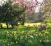 Cele mai frumoase 10 grădini din lume. Galerie Foto
