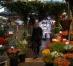 Cele mai frumoase piețe de flori din lume. Galerie Foto